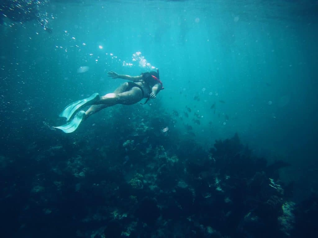 Snorkeling underwater in Florida Keys - very blue clean water!